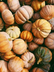 Pumpkins, Squash, and Gourds